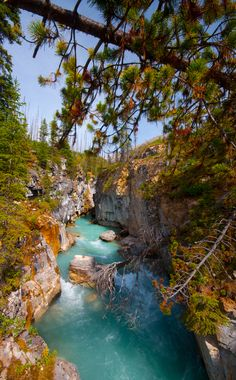 Marble Creek - Kootenay National Park, British Columbia, Canada