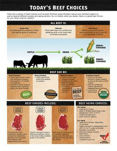 Texas Beef Council - Grain-fed and Grass-fed Beef Organic Beef, Organic Recipes, Beef Nutrition, Different Cuts Of Beef, Aged Beef, Beef Recipes, Healthy Recipes, Food 101, Protein Power