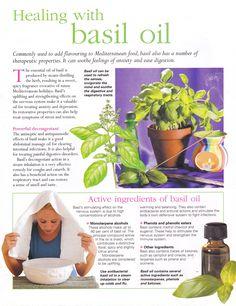 Essential Oils: Healing with Basil Oil Basil Essential Oil, Doterra Essential Oils, Young Living Essential Oils, Essential Oil Blends, Healing Oils, Aromatherapy Oils, Healing Herbs, Natural Healing, Holistic Healing