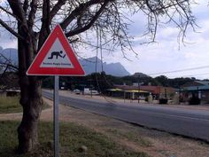 Street signs like this: | 31 Pictures That Prove South Africa Is The Craziest Place On Earth