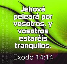 Estas obedeciendo a Dios?..  El peleara por ti.... Bendiciones....