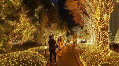 TOKYO【Christmas Lights】Shinjuku Station.  [Terrace City and Minami Lumi] 2018. #4k #新宿ミナミルミ - YouTube