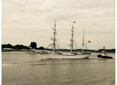 De Statsraad Lehmkuhl - Antwerpen - Tall Ships Races 2016