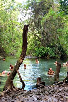 Sai Ngam secret hot springs  Natural Pai and the best birthday ever via The World on my Necklace