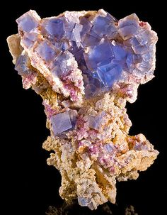 Fluorite on Quartz from France  by Exceptional Minerals