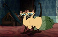 """""""We are Siamese if you please... We are Siamese if you don't please."""