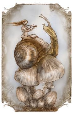 Snails+Song.......Greeting+Card+by+renae+taylor+by+renaeleataylor,+$3.50