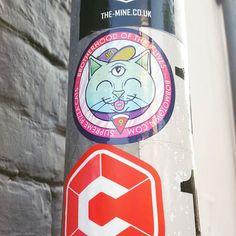 Found @bobmotown in Brighton! . . #brighton #brightonstreetart #streetartbrighton #bobmotown #cats #sticker #stickerporn #stickerslap #urbanart #slaps