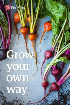 Pinboard Gardening Campaigns - 'Grow Your Own Way' Highlights Winning Ideas on Pinterest (GALLERY)