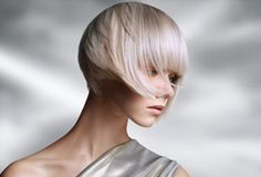 Welcome to The Wella World-pin it by #carden