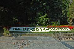 Almanaque vegetal en el Parque de San Francisco, Oviedo. Principado de Asturias. Spain. [By Valentin Enrique].