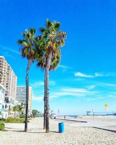 Herätys klo 4 aamulta tuntuu kivemmalta kun tietää pitkän lennon toisessa päässä odottavan palmut!  Woke up at 4am... and that's okay because I'm on my way to the Caribbean! This photo from Los Angeles last week.  (via Instagram)
