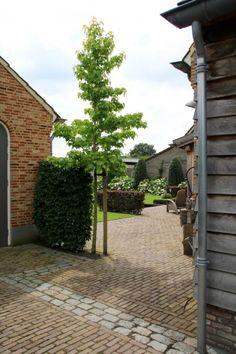 Brick Pathway, Stone Driveway, Belgian Style, Garden Deco, Garden Office, White Gardens, Garden Inspiration, Outdoor Living, Pergola