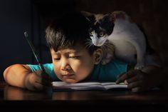 A Lovely Companion - Amazing Photographs - 121Clicks.com