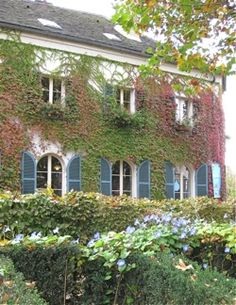 1000 images about paris jardins et parcs on pinterest luxembourg paris and paris france for Maison du jardin paris