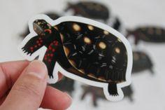 Red Footed Tortoise Vinyl Die Cut Sticker Item 601 by StickyGecko, $2.50