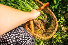 How to Align Your Travel Plans to Your Needs – Chique Romania Short Trip, City Break, Fresh Vegetables, Romania, The Locals, Trip Planning, Traveling By Yourself, How To Plan
