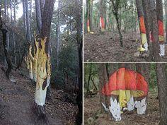 El bosc pintat de Poblet, ruta micològica amb nens | tot nens