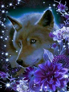 Wolf Photos, Wolf Pictures, Wolf Background, Indian Wolf, Native American Wolf, Wolf Artwork, Fantasy Wolf, Wolf Spirit Animal, Wolf Wallpaper