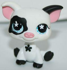 Littlest Pet Shop BLACK & WHITE PIG #537  #Hasbro