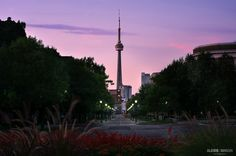 Post with 0 votes and 55 views. My friend from France snaped this beautiful photo of Toronto at dusk. credit of course to: Alexis Mangin, thought you guys wou Cn Tower, Dusk, Trending Memes, My Friend, Toronto, Funny Jokes, Canada, France, Building