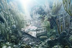 Andreas Franke's Photographic Montages Encounter A Sinking World | Hi-Fructose Magazine