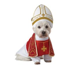 Holy Hound- Halloween Costumes for Dogs