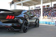 GT350 Colors - Page 46 - 2015+ S550 Mustang Forum (GT, GT350, GT500, I4, V6) - Mustang6G.com