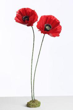 Glassine paper poppy diy flower