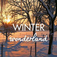 #Winter #wonderland #justaway #travel #quotes #reisen #urlaub #justawaycom