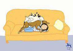Ilustración sobre la siesta perruna por El galgo azul