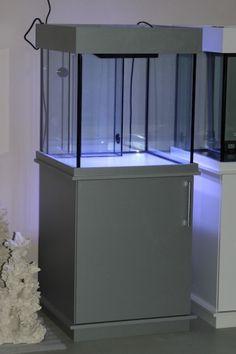 die besten 25 aquarium 60l ideen auf pinterest. Black Bedroom Furniture Sets. Home Design Ideas