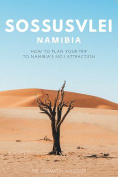 Our comprehensive guide to Namibia's beautiful Sossusvlei national park. Covering everything from when to visit, where to stay, how to get around safely, what to see and do (Dune 45 and Deadvlei included! Travel Guides, Travel Tips, Travel Hacks, Chobe National Park, Africa Destinations, Travel Destinations, Namibia, Roadtrip, Africa Travel