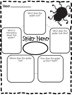 Spider Report and Activities-freebie Kindergarten Science, Teaching Science, Teaching Ideas, Preschool, School Holidays, School Fun, School Stuff, Summer School, School Ideas