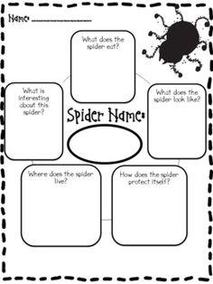 Spider Report and Activities-freebie Kindergarten Science, Teaching Science, Science Activities, Teaching Ideas, Science Ideas, Preschool, Educational Activities, Insect Activities, Speech Activities