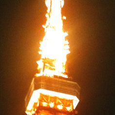 Tokyo tower, midnight