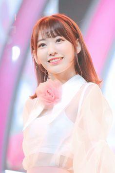 My Lovely Sakura Yuri, Honda, Sakura Miyawaki, Best Kpop, Japanese Girl Group, Kim Min, The Most Beautiful Girl, Miyazaki, The Wiz
