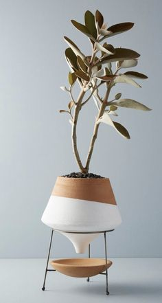 Made with glazed terracotta and metal Dipped Clay Pot + Stand by Anthropologie V. - Garden Style - Made with glazed terracotta and metal Dipped Clay Pot + Sta