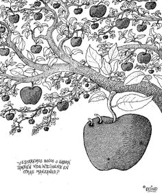great analogy- are we alone or is there intelligent life in other apples?
