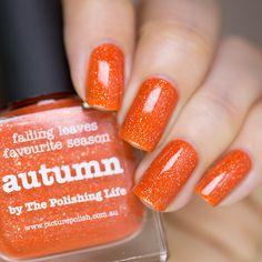 piCture pOlish- Autumn