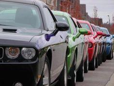Dodge Challenger  . . . . SpringFest!