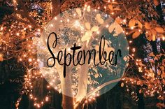 cozy fall | autumn, cozy, fall, fashion, hello september, leaves, lights, love…