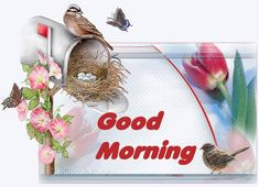 Good Morning mailbox with bird Good Morning Gif Funny, Good Morning Animated Images, Good Morning Gif Animation, Good Morning Greeting Cards, Latest Good Morning Images, Good Sunday Morning, Good Morning Picture, Good Morning Friends, Good Morning Messages