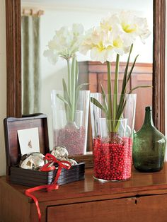 Bring Christmas cheer to any tabletop or dresser with an easy, inexpensive flower arrangement. Plant an amaryllis bulb in a narrow glass vase. Carefully place the narrow vase inside a larger glass one, filling the empty space between with cranberries.  myhomeideas.com