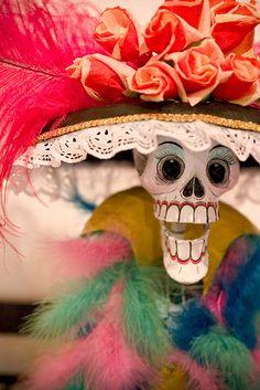 Esqueleto~image via Nicole Hanusek