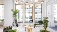 Anti-Aging Startup Elysium Health Has the Most Zen Office of All Time Zen Office, Office Decor, Office Inspo, Workspace Design, Office Plants, Architectural Digest, Office Interiors, Anti Aging, All About Time