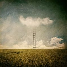 Chronicles from the Great Reveries by Michael Vincent Manalo, via Behance
