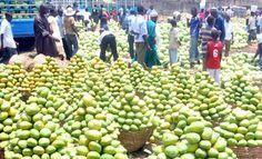 Zuba fruit market in Abuja, Nigeria #expo2015 #milan #worldsfair