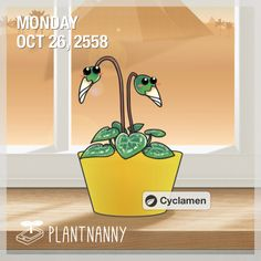 Say hello to my plant! It has absorbed 368 oz of water. Get yourself a plant at http://fourdesire.com/outer_link?url=http://itunes.apple.com/app/id590216134&l=en_TH&m=562D6198