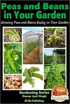 Peas and Beans in Your Garden - Growing Peas and Beans Easily in Your Garden (Gardening Series Book 21) - Kindle edition by Dueep Jyot Singh, John Davidson, Mendon Cottage Books. Crafts, Hobbies & Home Kindle eBooks @ Amazon.com.